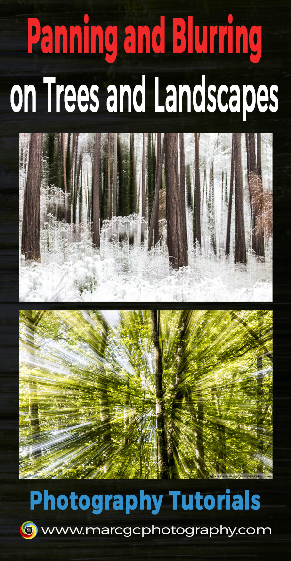 Lear how to capture remarkable blurred trees and other less common, but interesting, ways to blur landscapes.