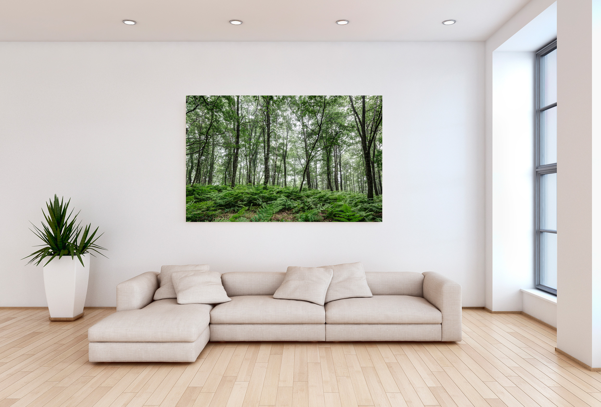 A Summer Day in the Forest - Metal Print