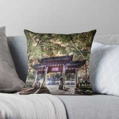 Jiading Confucius Temple (Shanghai, China) - Throw Pillow