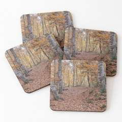 Neverending Autumn in la Fageda d'en Jordà - Coasters (Set of 4)