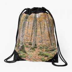 Autumn Between Trees (Fageda d'en Jordà, Catalonia) - Drawstring Bag